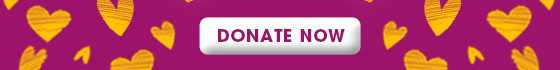 valentines day donate now button