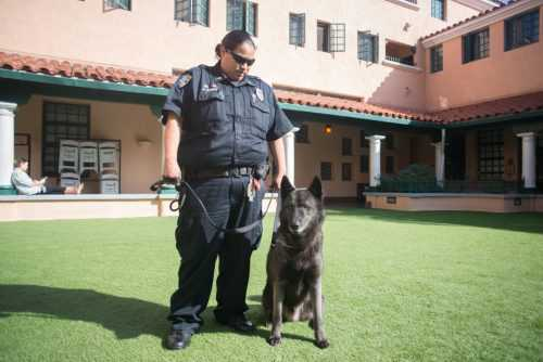 Father Joe's Villages Security with K9
